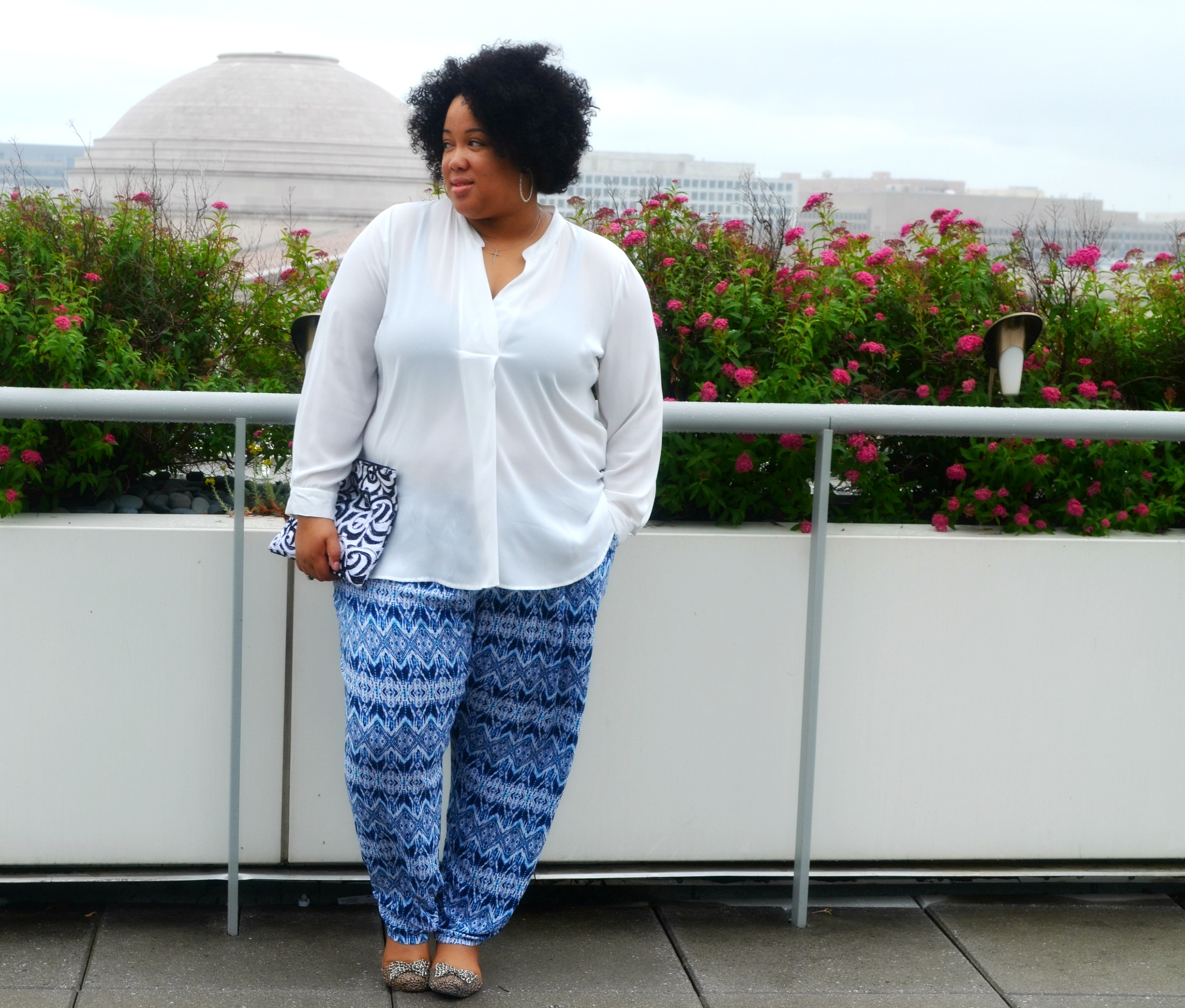 Fancy Pants - Plus Size Fashion